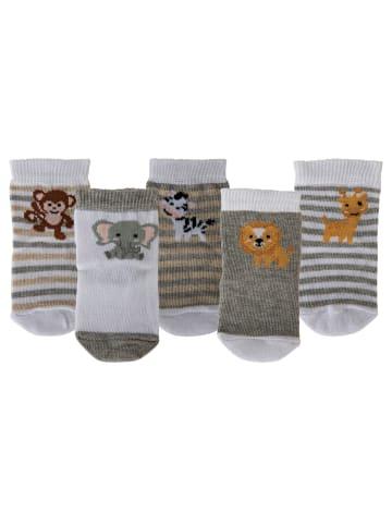 Cucamelon Socken 5er Pack in Safari