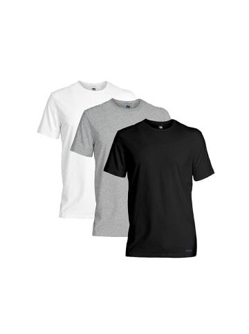 Ted Baker T-Shirt 3er Pack in Schwarz/Grau/Weiß