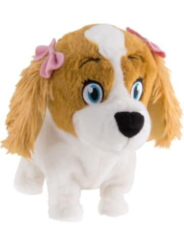 IMC Lola, kleiner süßer Hund