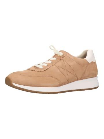Paul Green Sneaker in Braun/Weiß