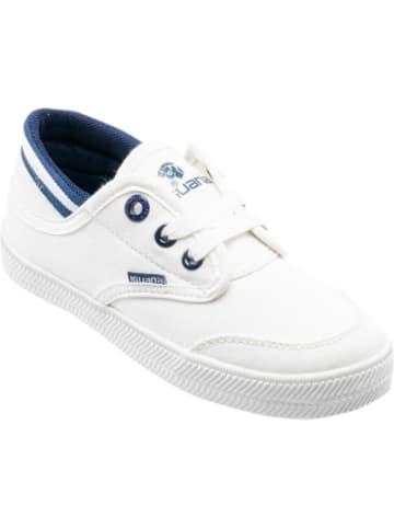 Iguana Sneakers Low TANEYG