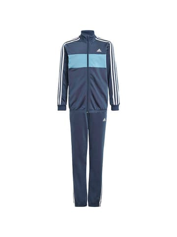 Adidas Trainingsanzug TIBERIO TS in Blau