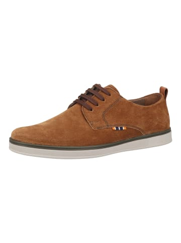 Fretz Men Sneaker in Wood