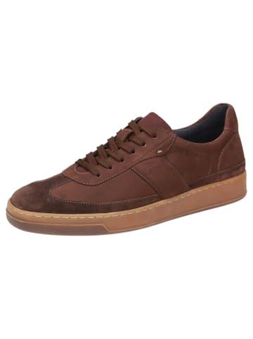 Sioux Sneaker Horvig-702 in braun