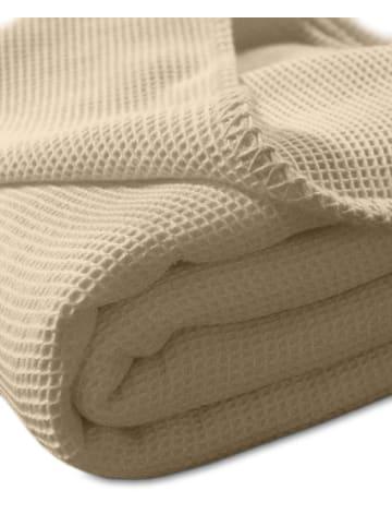 Kneer Wohndecke la Diva Waffelpique-Decke Qualität 91 in sand