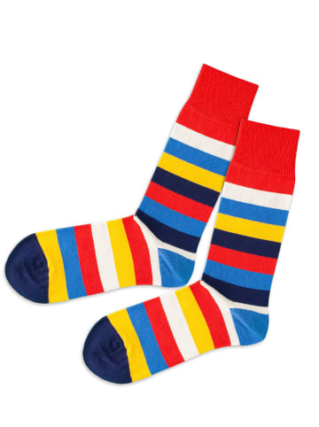 DillySocks Socken in Multi