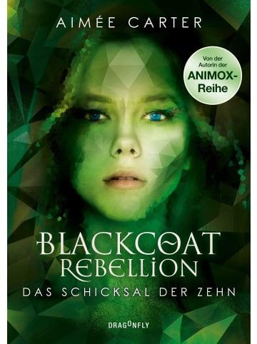 Dragonfly Blackcoat Rebellion - Das Schicksal der Zehn