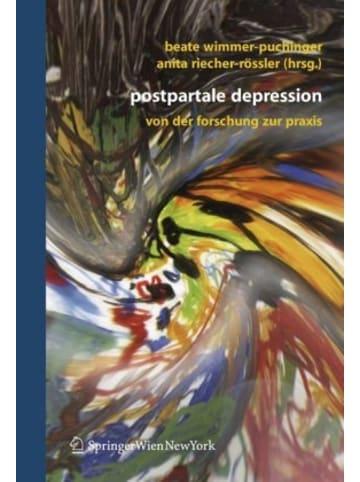 Springer Berlin Postpartale Depression