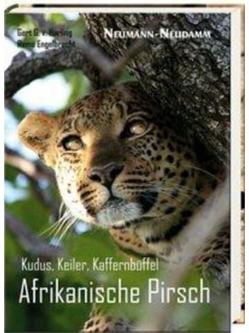 Neumann-Neudamm Kudus, Keiler, Kaffernbüffel   Afrikanische Pirsch
