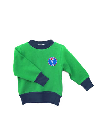 "MEGANAUTEN Pullover ""Aerobee01"" in Grasshopper Green"