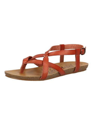 Blowfish Sandalen in Rot