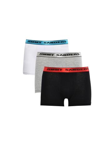 JIMMY SANDERS Boxershorts Faust in grey
