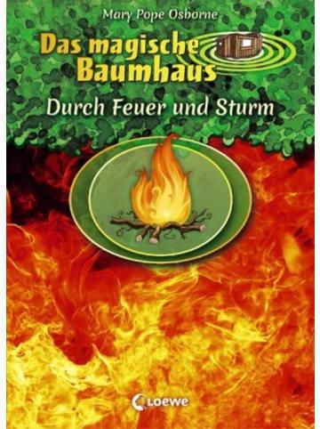 Loewe Verlag Das magische Baumhaus - Durch Feuer und Sturm
