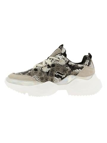 Supertrash Sneaker in MGRY