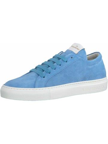 ARKK Sneakers in hell-blau