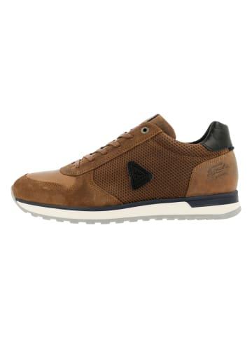 GAASTRA Sneaker in Cognac