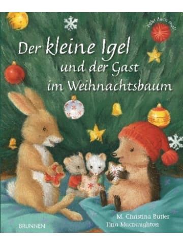 BRUNNEN Der kleine Igel und der Gast im Weihnachtsbaum