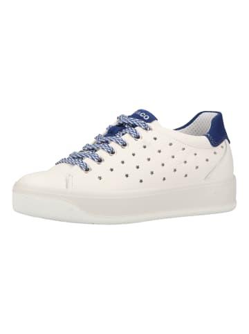 Igi&Co Sneaker in Weiß/Blau