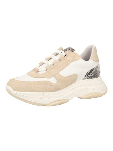 SPM Sneaker in Beige