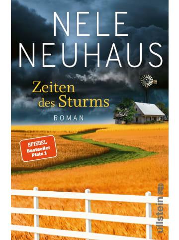 Ullstein Taschenbuchverlag Zeiten des Sturms | Roman