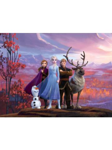 AG Design Wandtapete Disney Frozen, 255 x 180 cm