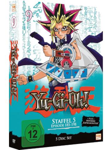 Yu-Gi-Oh DVD Yu-Gi-Oh! - Season 5.1: Episode 185-198