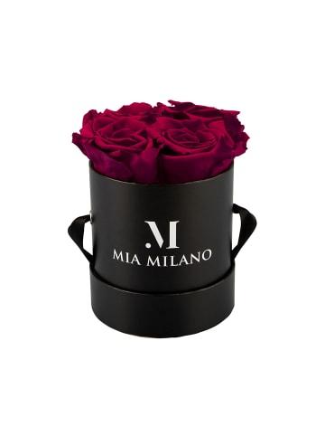 Mia Milano Infinity Rosen Konservierte Rosen in dunkelrot