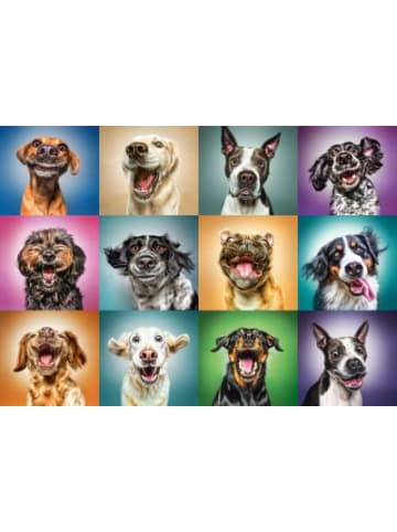 Trefl Puzzle 1000 Teile - Lustige Hunde
