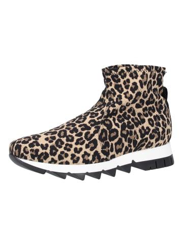 Rapisardi Stiefelette in Leopard
