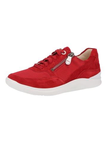 Ganter Sneaker in Rot