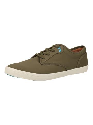 Boxfresh Sneaker in Khaki