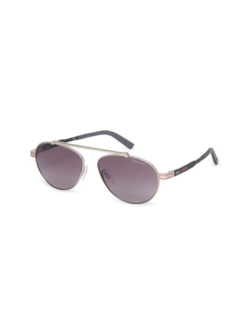 DUCATI Eyewear Sonnenbrille DA7013 in silver