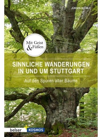 Belser Sinnliche Wanderungen in und um Stuttgart | Auf den Spuren alter Bäume