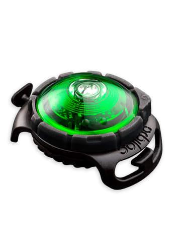 Orbiloc Dog Dual Safety Light Hundelicht grün
