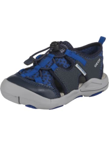 sports shoes 728b6 c57dd Schicke Geox Kindersandalen im limango Outlet