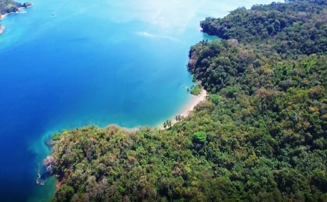 1,500 Hectares of Land for Sale in Isla del Rey