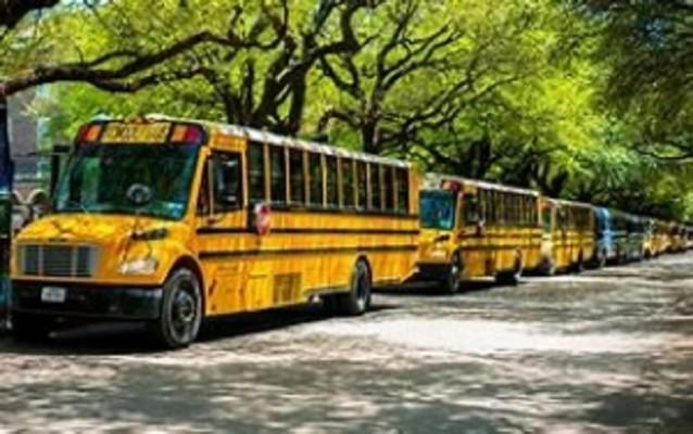 Transportation Bus Company For Sale