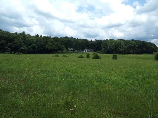 Dream 76.76 Acre Farm with Endless Possibilities
