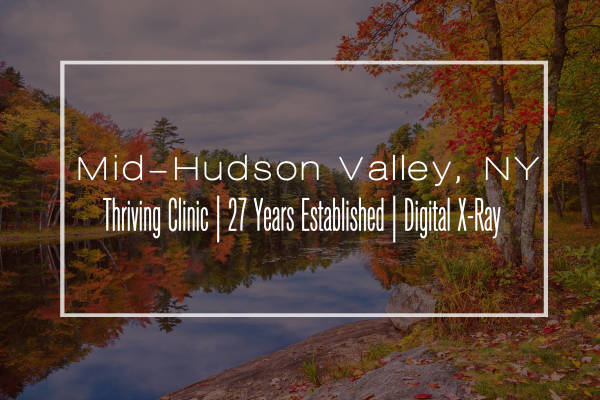 Contemporary Clinic for Sale in Mid-Hudson Valley