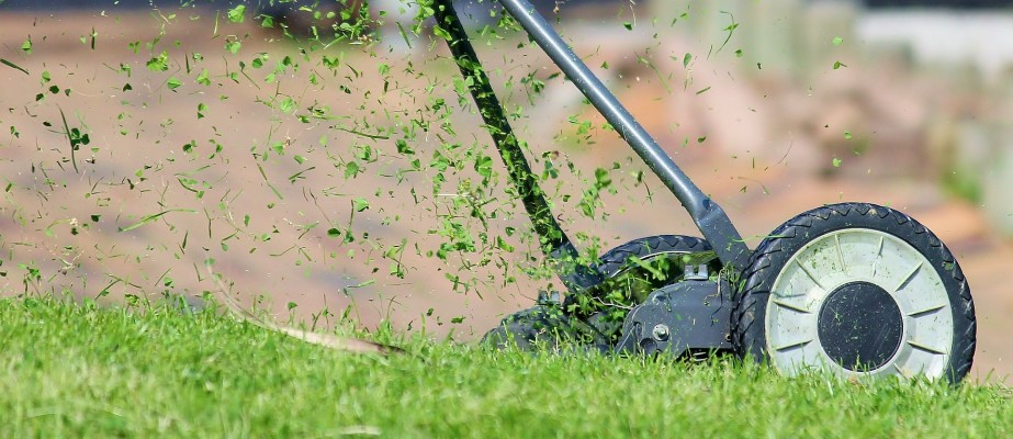 Maintenance Landscape Company With Contracts
