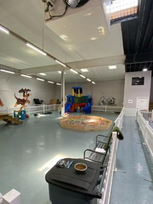 Dog Day Care Boarding Facility