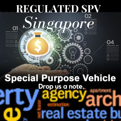 Regulate SPV Accounts - Via Asset Management Group