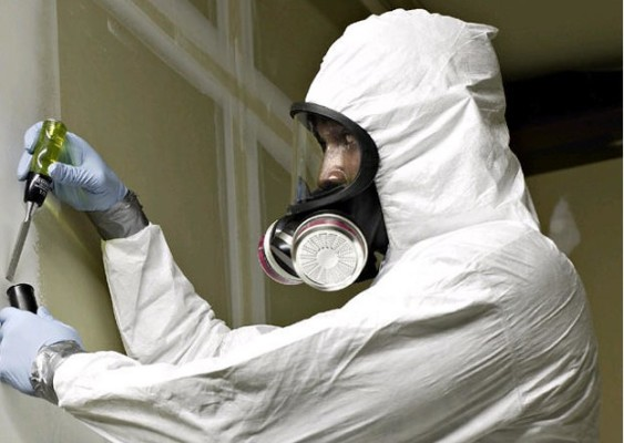 Environmental Based Services - Lead Mold Asbestos