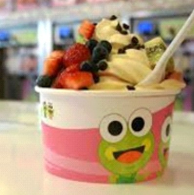SweetFrog Yogurt Store Near Charlotte, NC
