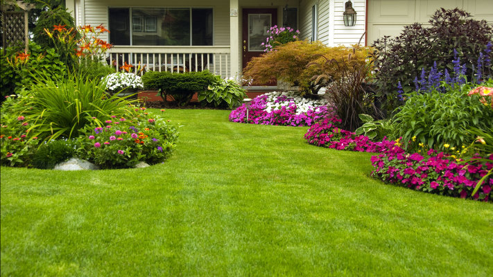Small Landscaping Company with Clean Books