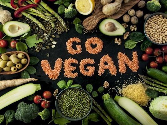 SM Driven eCom Business in the Vegan Verticals