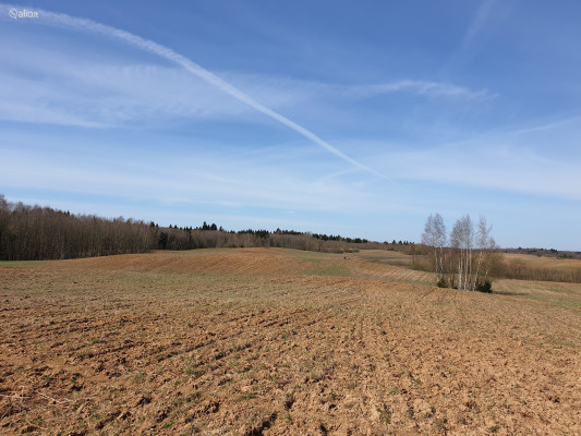 130 ha Lands in One Area in Lithuania