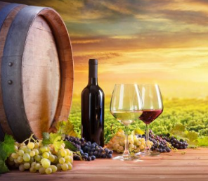 Established Wine Distributor with Exclusive Brands