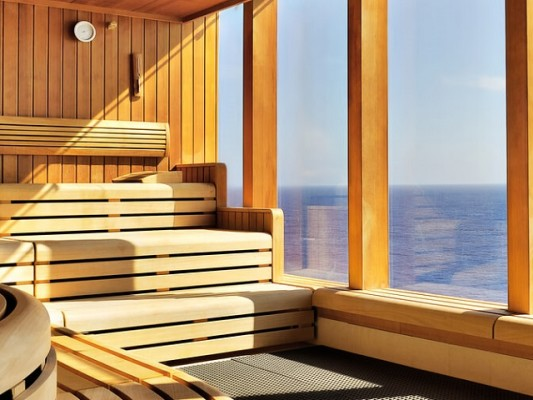 High Growth Sauna & Hot Tub eCom - $4200 AOV