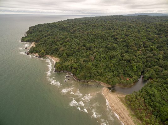 Sale of Land for Development in Colón